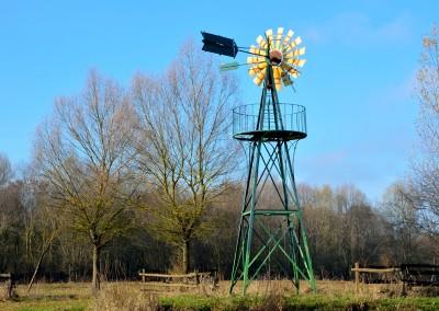 Windmill_800